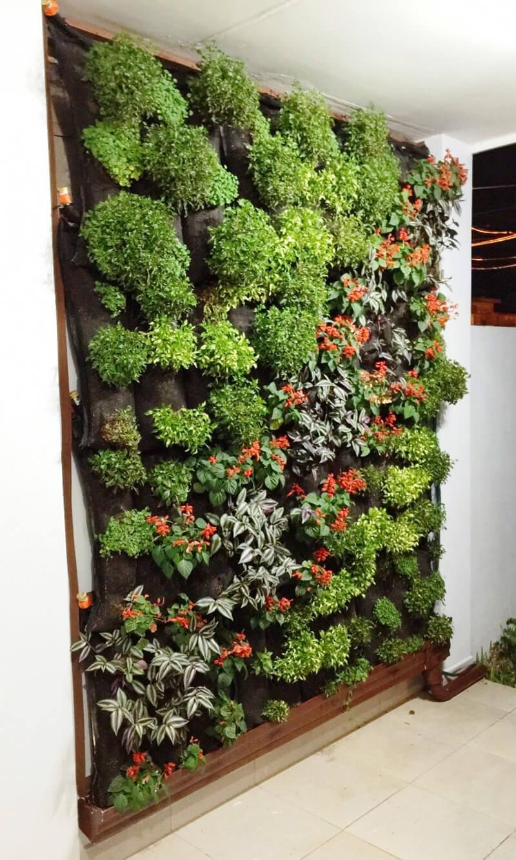 Pared verde disema proteger - Proteger paredes de rozaduras ...