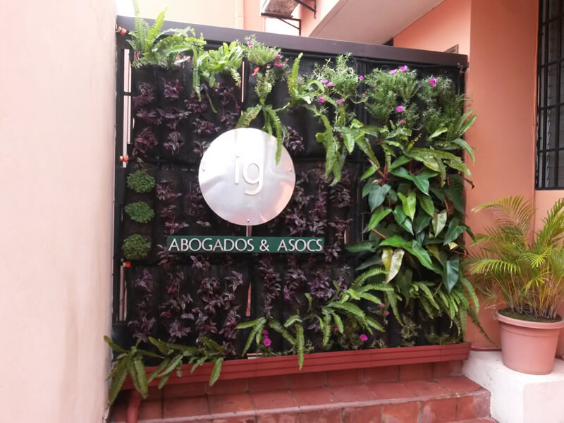 Suministro e Instalación de 4.32 m2 de pared verde en recepción de las oficinas I&G ABOGADOS