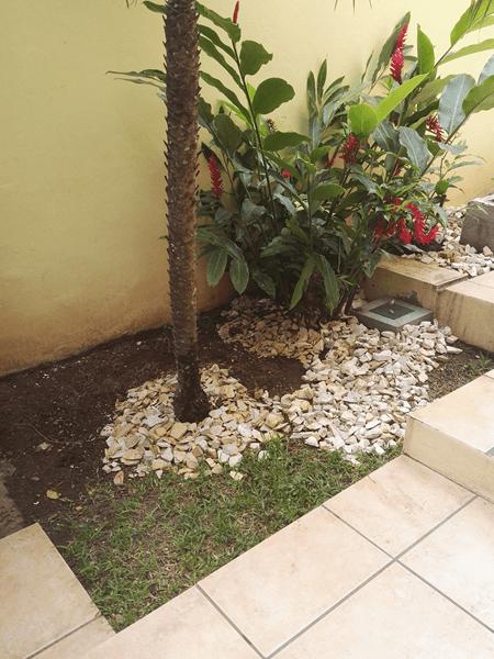 Jardin y drenaje frances embajada alemana proteger for Drenaje de jardin