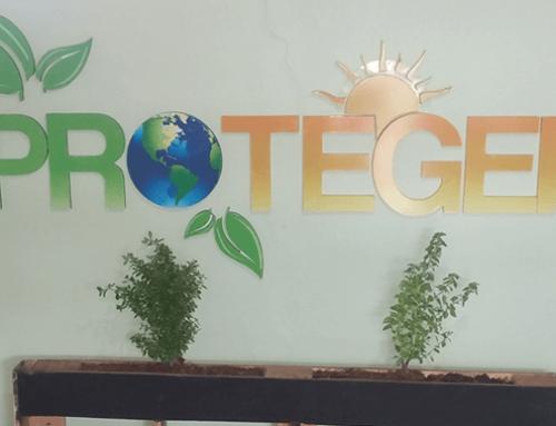 Diseño y fabricación de herbarios Grupo Proteger