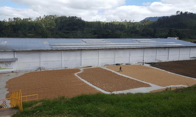 sistema De Autoproducción Solar Fotovoltaico COMSA, Cafè Organico Marcala La Paz Grupo Proteger